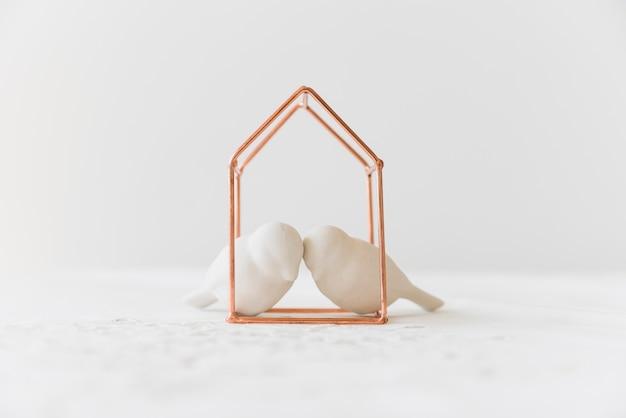 Dwa białego lovebirds w metalu domu