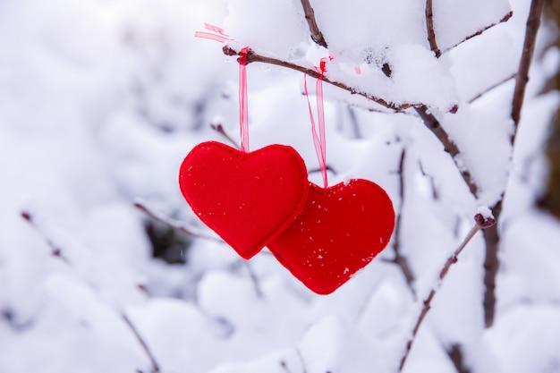 Dwa czerwone serca wiszą na gałęzi na tle zimy