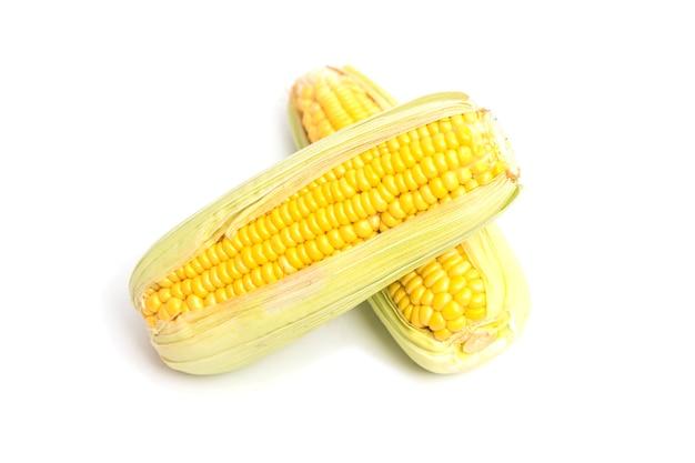 Dwa kłosy kukurydzy na białym tle.