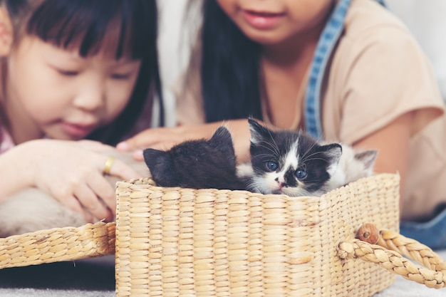 Dwa mała dziewczynka bawić się z kotem w domu, przyjaciela statku pojęcie.