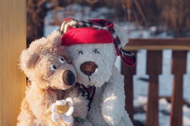 Dwa misie, jeden biały w czerwonym kapeluszu, drugi brązowy z rumiankiem, siedzący w objęciach. pojęcie rodziny, związków, miłości.