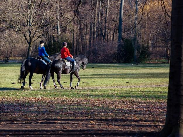 Dwa młodej kobiety jedzie konia w parku.