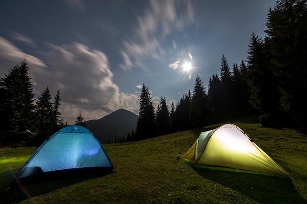 Dwa namioty turystyczne na zielonej trawiastej polanie wśród wysokich sosen.
