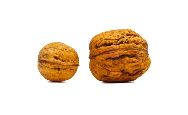 Dwa orzechy włoskie, z których jeden jest bardziej niż drugi na białym tle