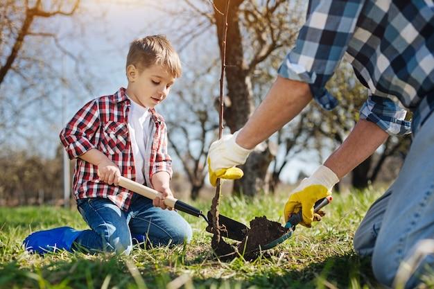 Dwa pokolenia mężczyzn spędzają wolny czas na świeżym powietrzu, wspólnie uprawiając ogród i sadząc nowe drzewo owocowe