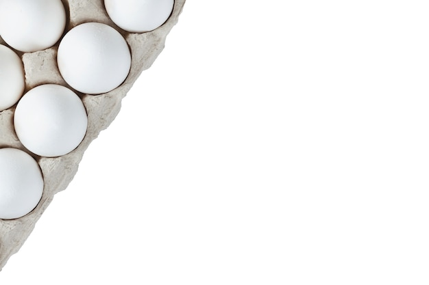 Dwa rzędy białych jajek umieszczonych w kartonie na białym tle miejsca kopiowania