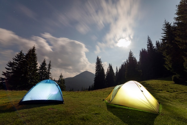 Dwa turystyczne namioty na zielonym trawiastym lesie