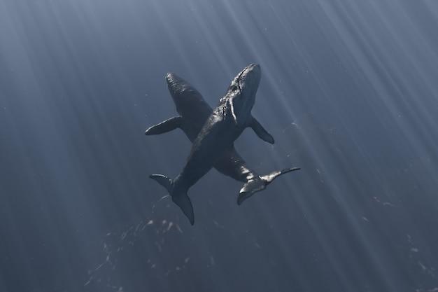 Dwa wieloryby w głębi oceanu tańczące w promieniach słońca padających z powierzchni. renderowania 3d