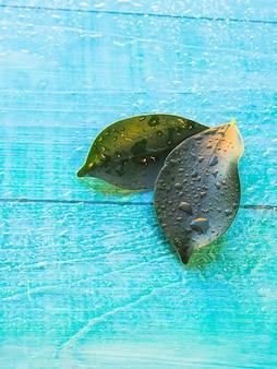 Dwa zielony liść na drewnianym tle z wodnymi kroplami jako tło dla zdroju pojęcia