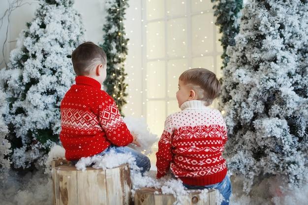 Dwaj bracia chłopiec w świątecznym czerwonym swetrze z wizerunkiem jelenia siedzącego w pobliżu jodły. widok z tyłu.