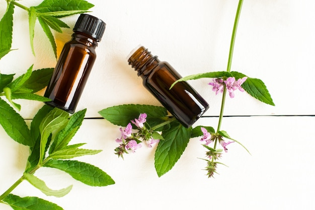 Dwie butelki medyczne z miętą extrata na białym drewnianym tle z zielonymi liśćmi mięty i kwiatami. widok z góry.