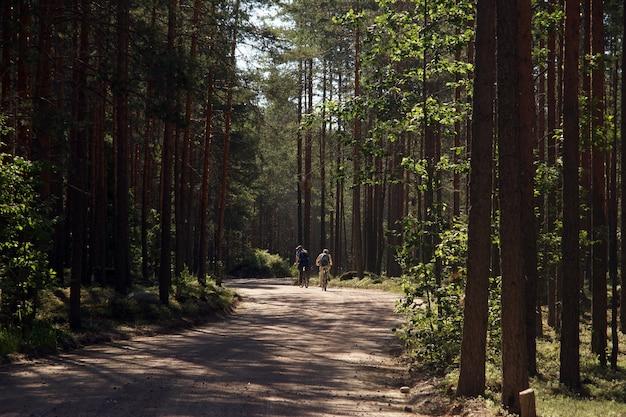 Dwie dorosłe osoby jeżdżą na rowerach po polnej leśnej drodze, widok z tyłu