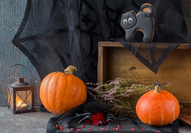 Dwie dynie, trzy czarne pająki, latarnia, jesienny wystrój i czarny kot