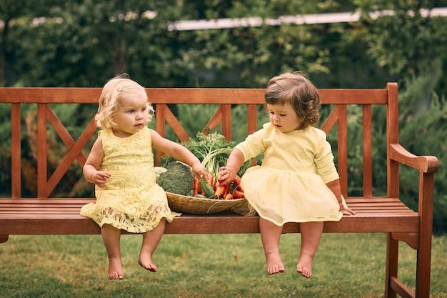 Dwie dziewczynki w żółtych sukienkach, boso, w zielonym ogrodzie siedzą na ławce obok dużego kosza warzyw z ogórkami, marchewką i brokułami. zdrowe jedzenie, zielone wegetariańskie jedzenie.