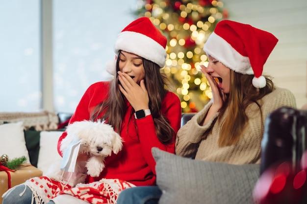 Dwie dziewczynki z małym psem siedzą na kanapie w sylwestra.