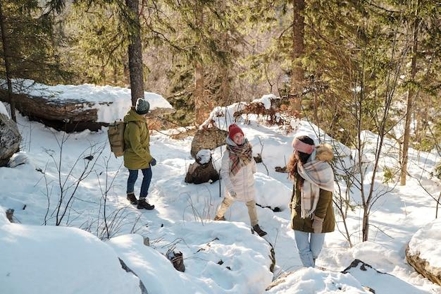 Dwie dziewczyny i młody mężczyzna z plecakiem cieszą się spacerem w zimowym lesie