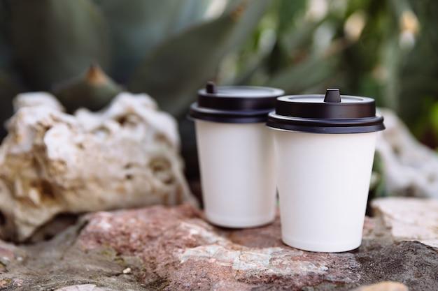 Dwie filiżanki kawy na wynos kubki z białego papieru na kamieniach za kamieniami rosną kaktus