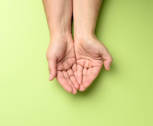Dwie kobiece dłonie złożone dłonią w dłoń na zielono, widok z góry