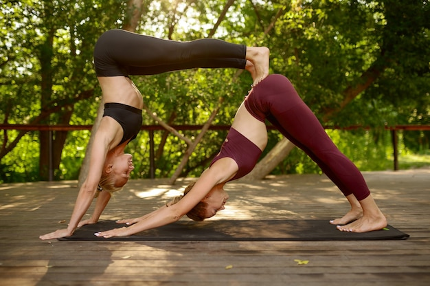 Dwie kobiety robi ćwiczenia równowagi na grupowym treningu jogi w letnim parku