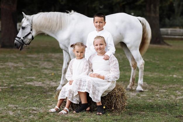 Dwie małe dziewczynki i chłopiec w pobliżu białego konia na farmie w letni dzień. rodzeństwo spędzające czas na wakacjach. szczęśliwa rodzina koncepcja.