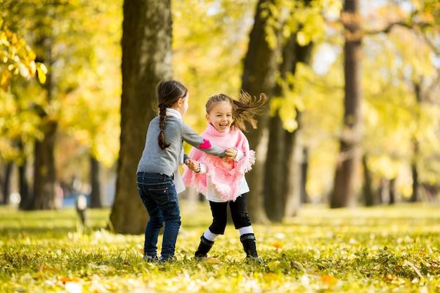 Dwie małe dziewczynki w parku jesienią