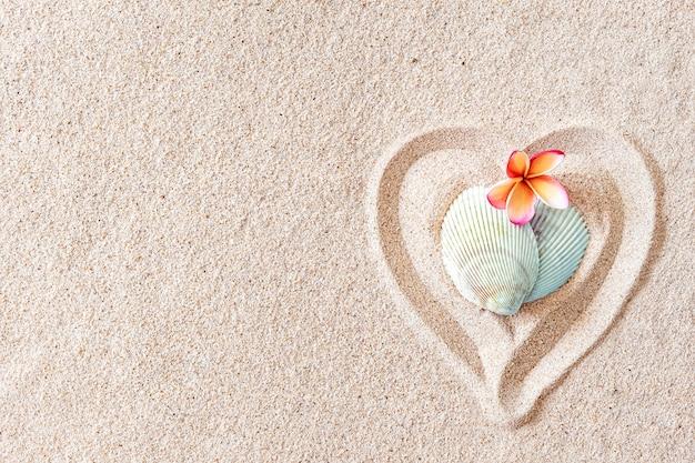 Dwie muszle w kształcie serca na gładkiej, piaszczystej plaży z miejscem na kopię, widok z góry