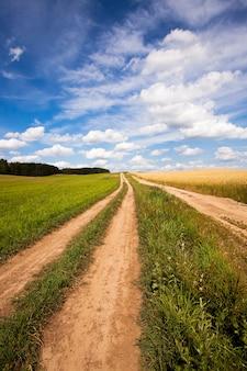 Dwie nieutwardzone drogi wiejskie, które przebiegają w pobliżu