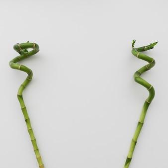 Dwie pałeczki bambusowe