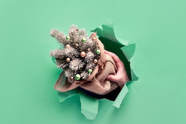 Dwie ręce trzymają dekoracyjną plastikową choinkę przez rozdarty papierowy otwór