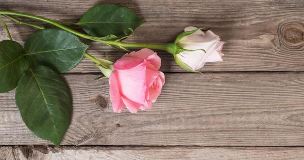 Dwie różowe róże na starym drewnianym tle