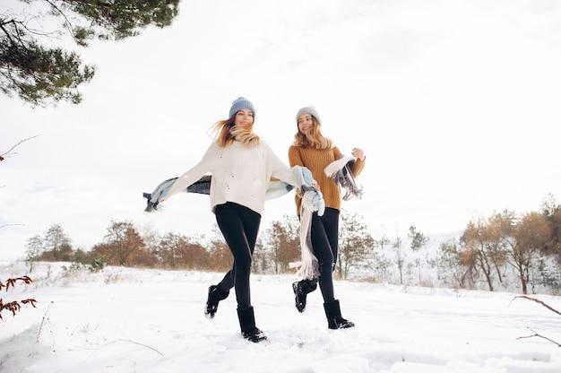 Dwie śliczne dziewczyny w winter park