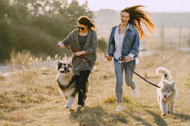 Dwie stylowe dziewczyny na słonecznym polu z psami