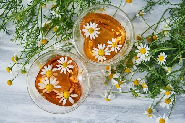Dwie szklane filiżanki herbaty z rumiankiem, rozsypane kwiaty rumianku na szaro