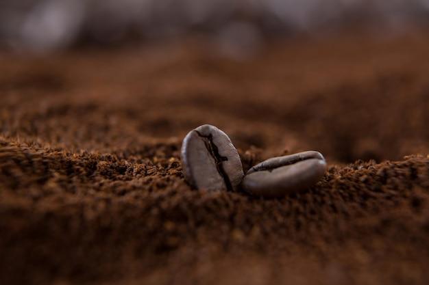 Dwie ziarna kawy na stosie palonej kawy