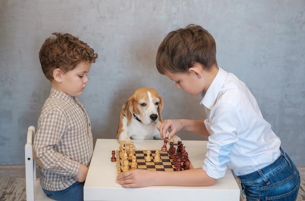 Dwóch chłopców gra w szachy przy stole. pies rasy beagle w zabawny sposób ogląda grę. gry planszowe w kręgu rodzinnym.