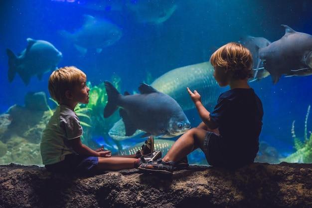Dwóch chłopców patrząc na ryby w akwarium.