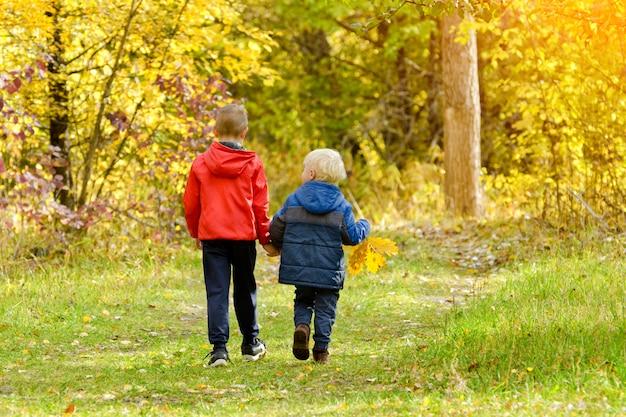 Dwóch chłopców spacerujących w lesie jesienią. słoneczny dzień. widok z tyłu