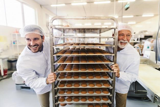 Dwóch ciężko pracujących, uśmiechniętych pracowników w sterylnych białych mundurach pchających półkę z ciasteczkami. wnętrze fabryki żywności.