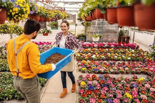 Dwóch godnych pracowników ogrodnictwa w szkółce przenosi wannę z ziemią. dookoła są doniczki z kolorowymi kwiatami.