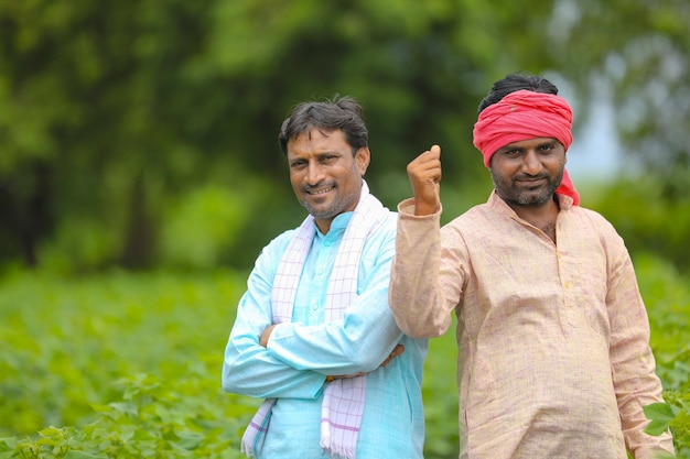 Dwóch indyjskich rolników stojących na polu rolnictwa bawełny.