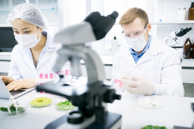 Dwóch naukowców prowadzących badania w laboratorium