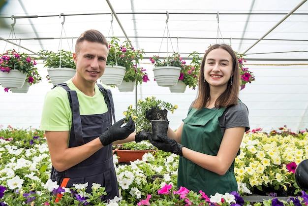 Dwóch pięknych młodych mężczyzn i kobiet pracuje w szklarni i rozmawia o uprawie kolorowych kwiatów. botanika