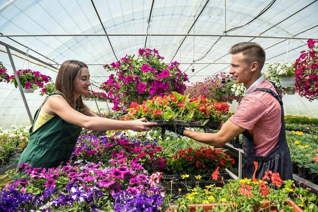 Dwóch pracowników pracujących razem w centrum kwiatowym