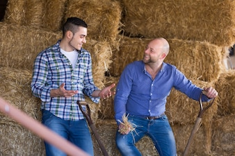 Dwóch rolników pracujących w stodole