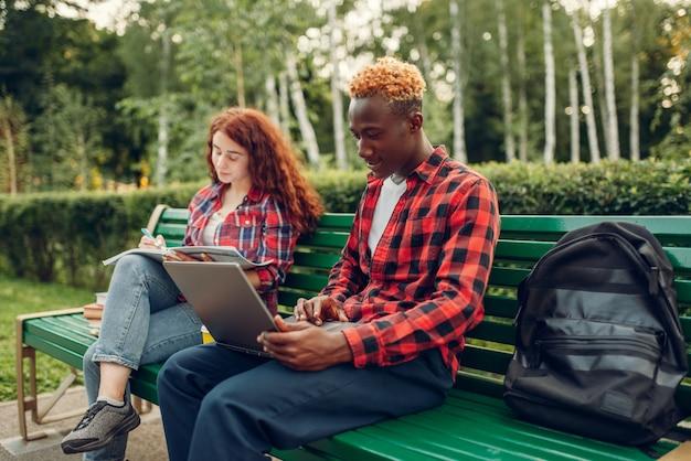 Dwóch studentów studiujących na ławce w letnim parku
