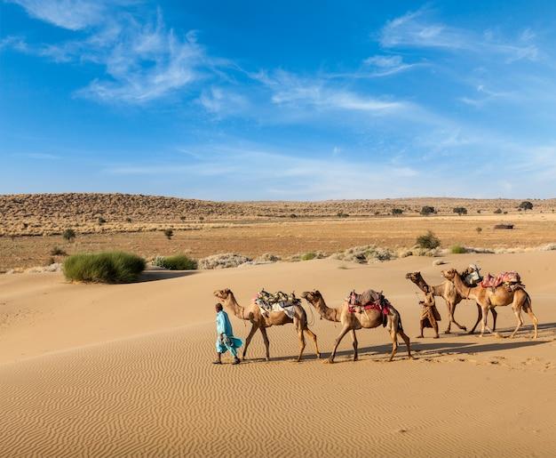 Dwóch wielbłądów z wielbłądami na pustynnych wydmach thar