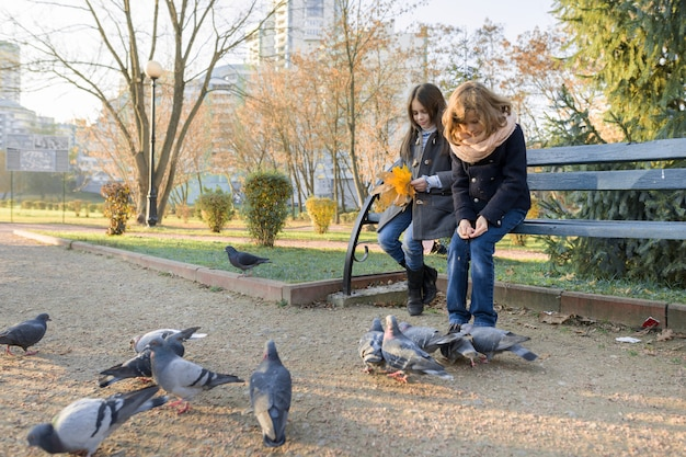 Dwoje dzieci dziewcząt karmi gołębie ptaków w słoneczny jesienny dzień