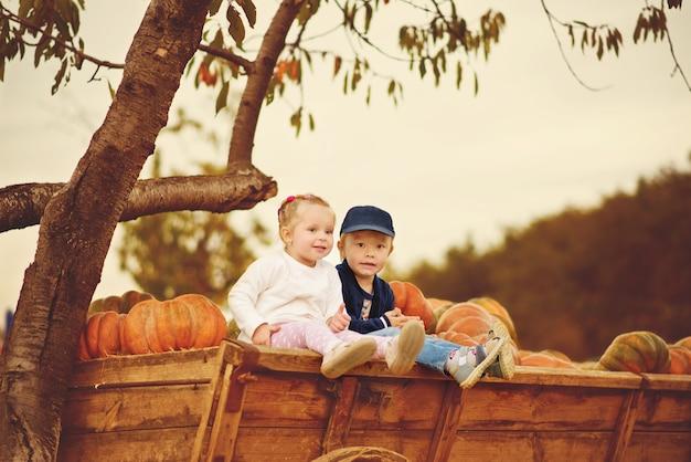 Dwoje dzieci siedzi w pobliżu alfonsów na farmie