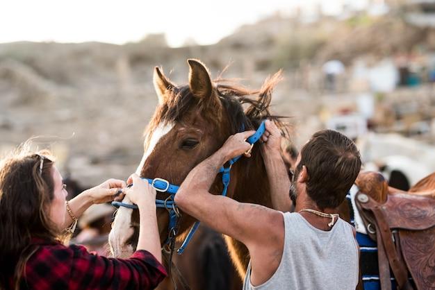 Dwoje ludzi rasy kaukaskiej wspólnie opiekujących się koniem na ranczo - przygotowanie zwierzęcia do biegania z kimś - para dorosłych pracujących razem na farmie