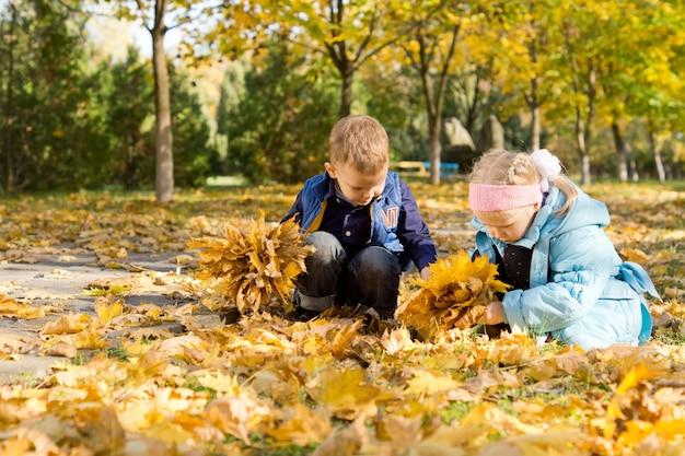 Dwoje małych dzieci bawiących się na dywanie z jesiennych liści, zbierając garście jasnożółtych liści, siedząc na ziemi w parku